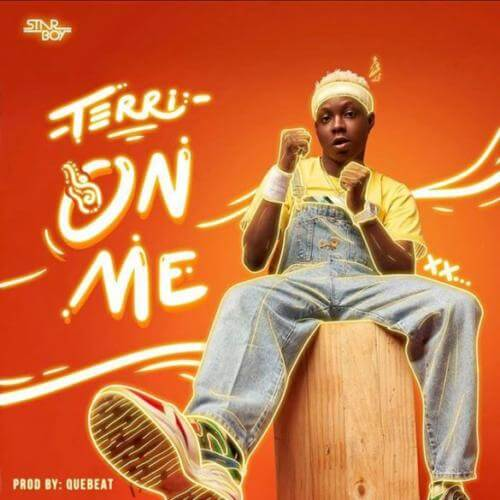 Music: Terri – On Me (Prod. By Quebeat)
